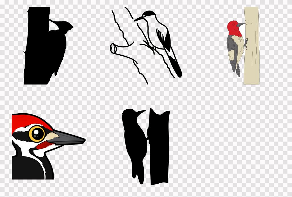 可爱卡通手绘啄木鸟png素材