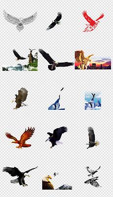 tif分层雄鹰展翅飞翔的图片 tif分层格式雄鹰展翅飞翔的图片素材图片 tif分层雄鹰展翅飞翔的图片设计模板 我图网