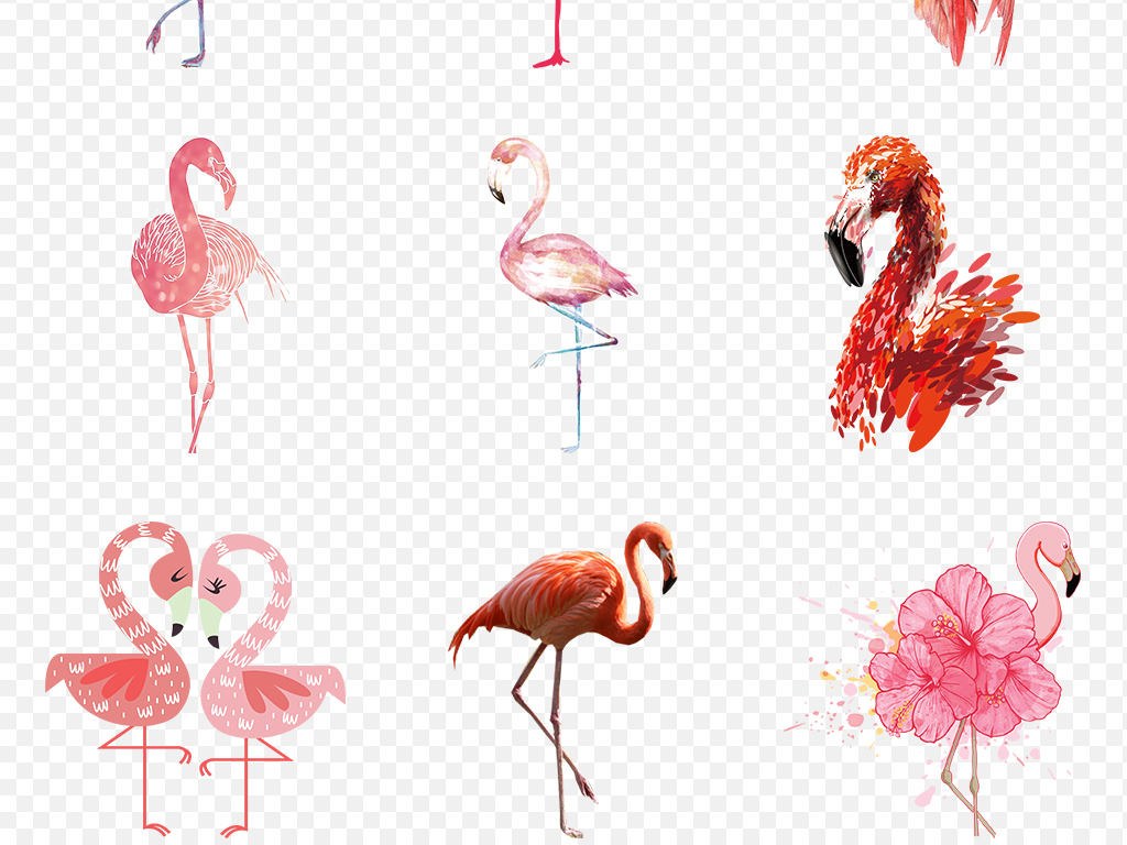 卡通手绘火烈鸟可爱海报素材背景图片png