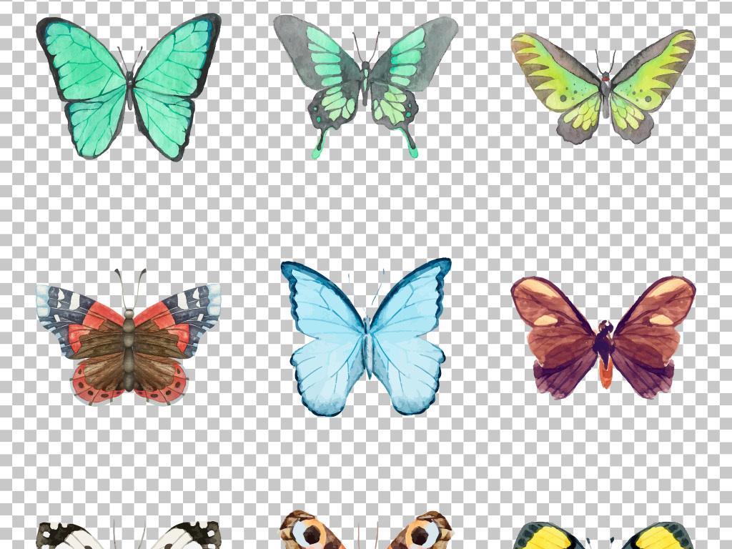 创意手绘水彩蝴蝶彩蝶免抠png水彩图片素材_模板下载