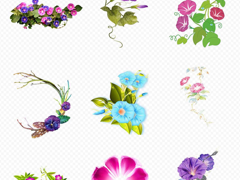 花卉花朵PNG免抠素材图片 模板下载 51.02MB 花卉大全 自然