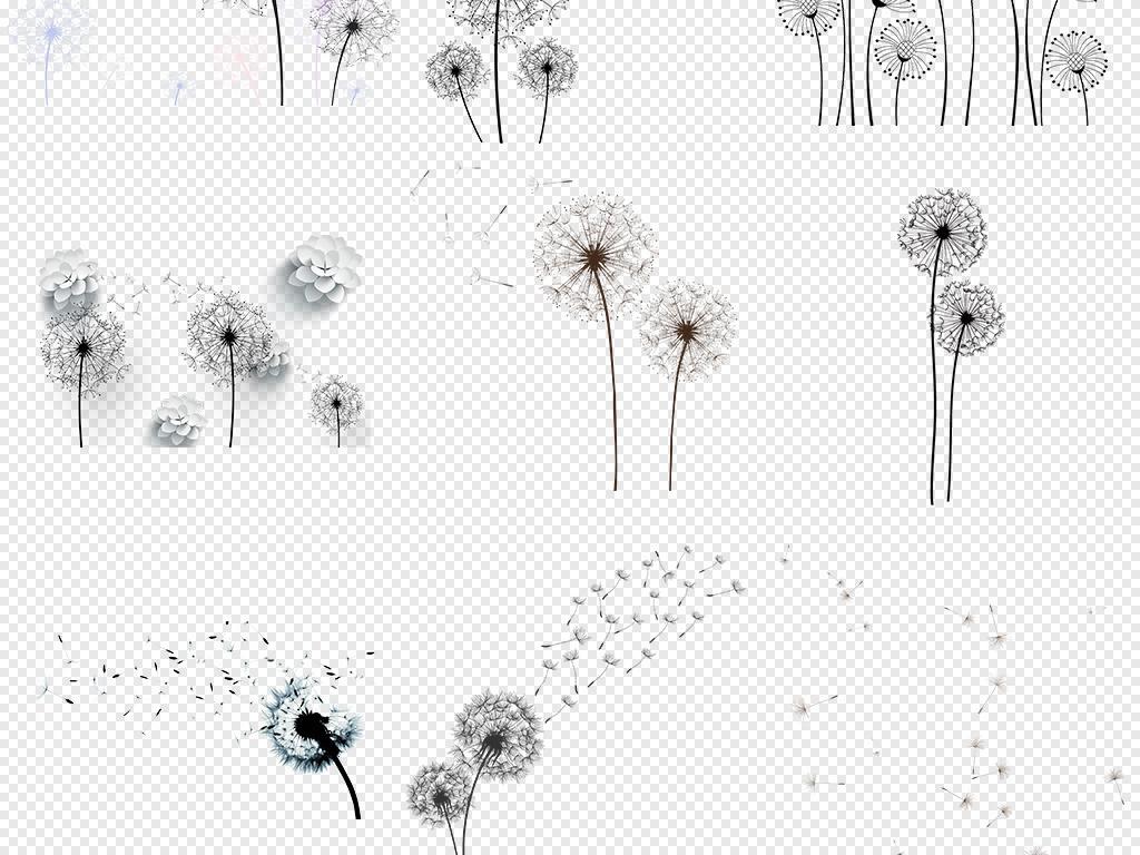 手绘卡通黑色蒲公英卡通花卉背景png素材