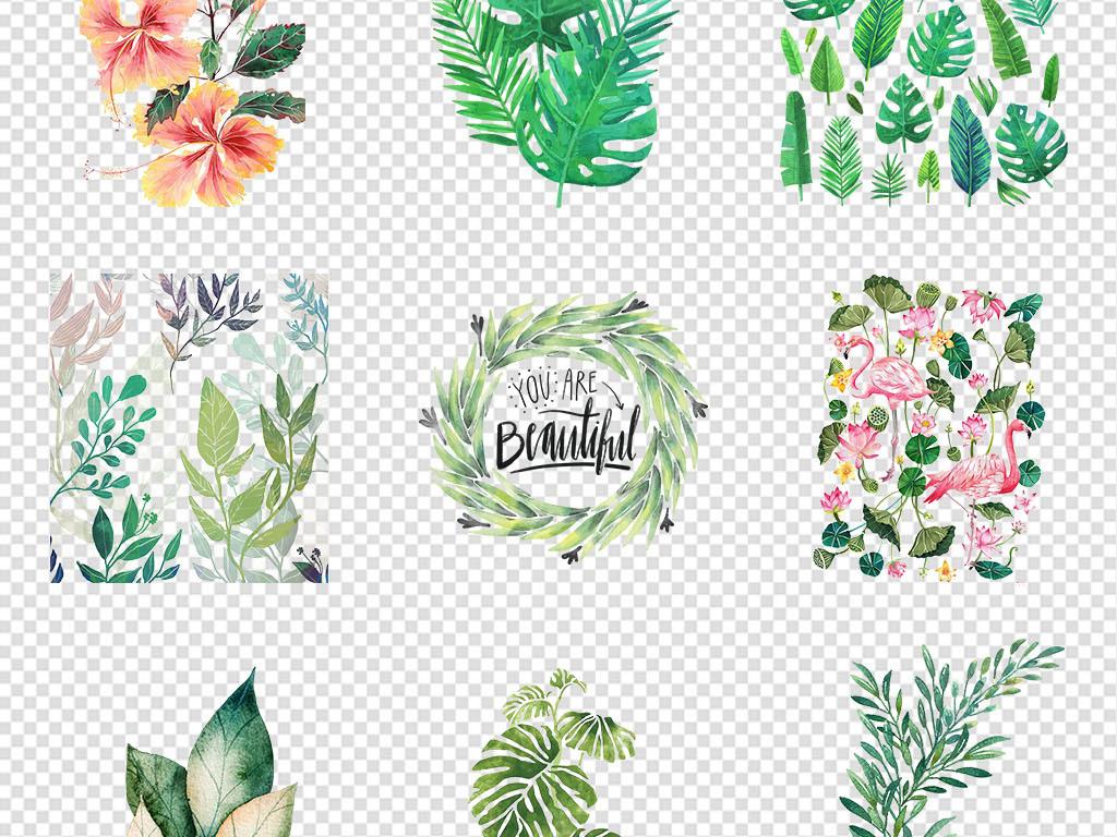 边框手绘热带植物花卉淡彩花卉花花卉水彩水彩花卉素材手绘花卉手绘
