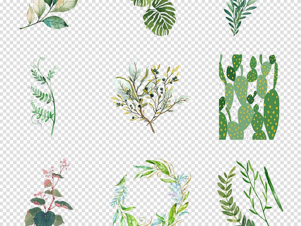 卡通水彩手绘小清新绿色植物花卉png素材