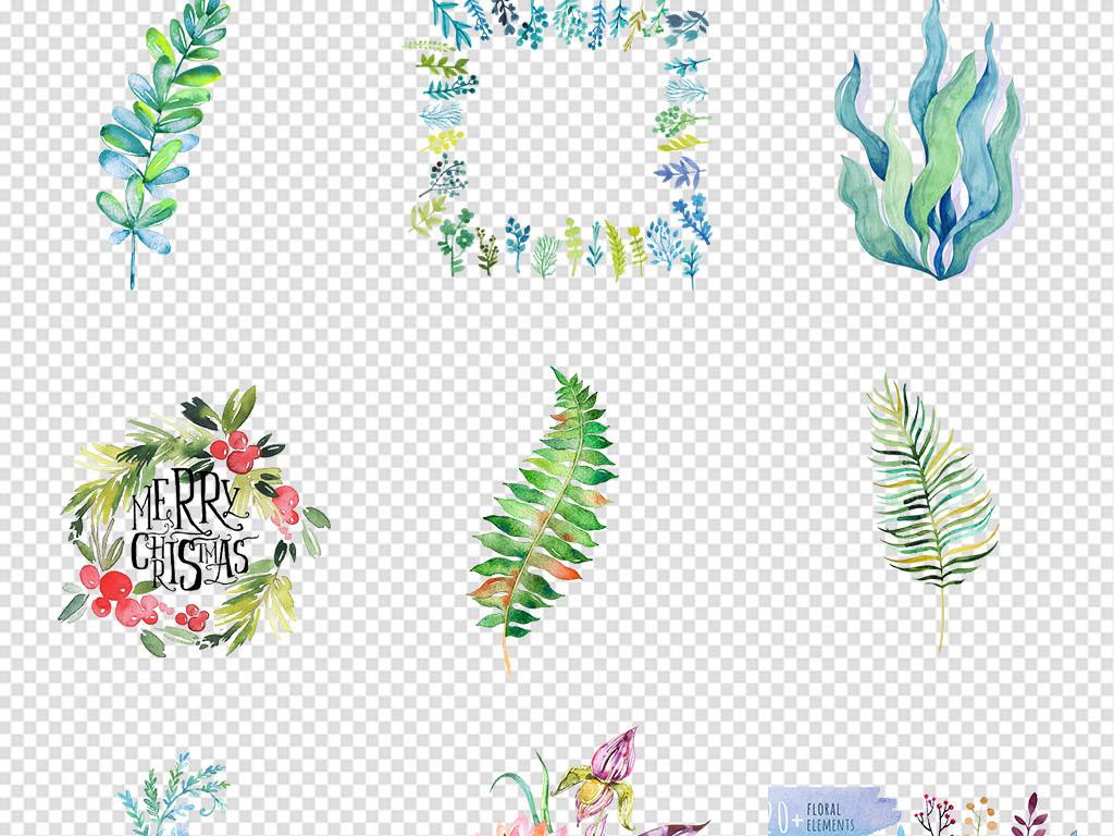 边框手绘热带植物花卉淡彩花卉花花卉水彩水彩花卉素材手绘花卉手绘水