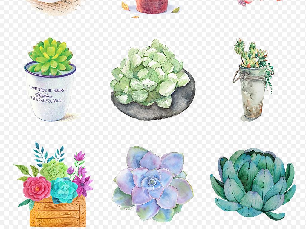 卡通手绘水彩多肉植物可爱盆栽海报素材背景图片png