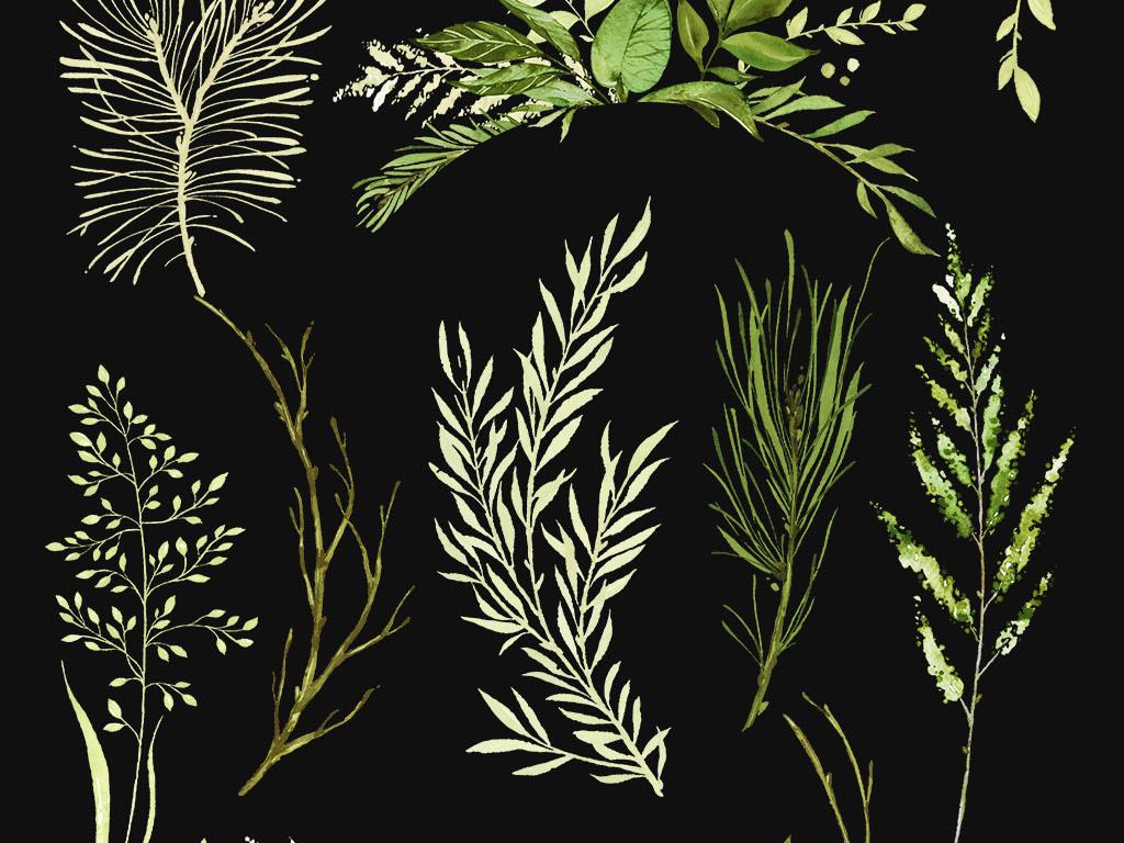 手绘水彩树叶绿植森系北欧热带雨林设计素材