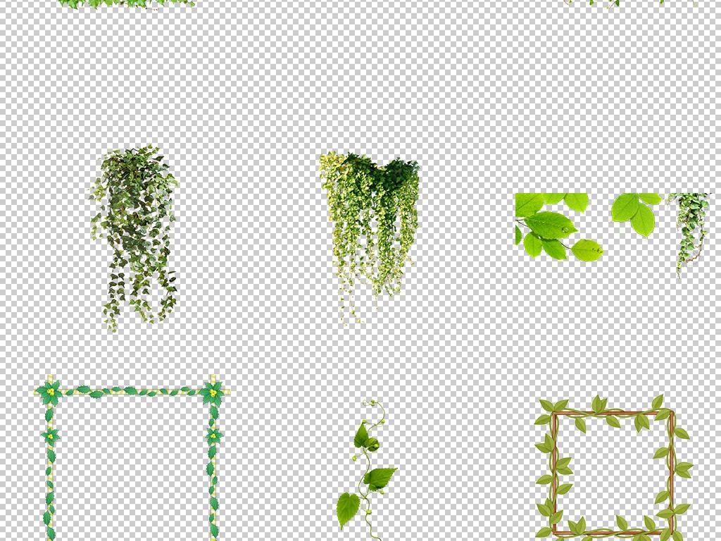 手绘缠绕卡通图片树叶素材绿色免抠春天免抠素材藤蔓树藤绿色树叶春天