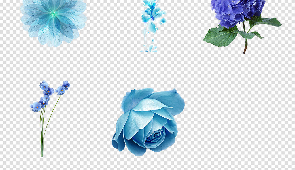 花朵花卉PNG免抠素材图片 模板下载 44.62MB 花卉大全 自然