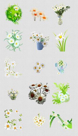 森系小清新水彩手绘绿叶花朵花卉海报png免抠素材