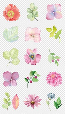 清新水彩手绘绿叶花朵花卉海报png免抠素材