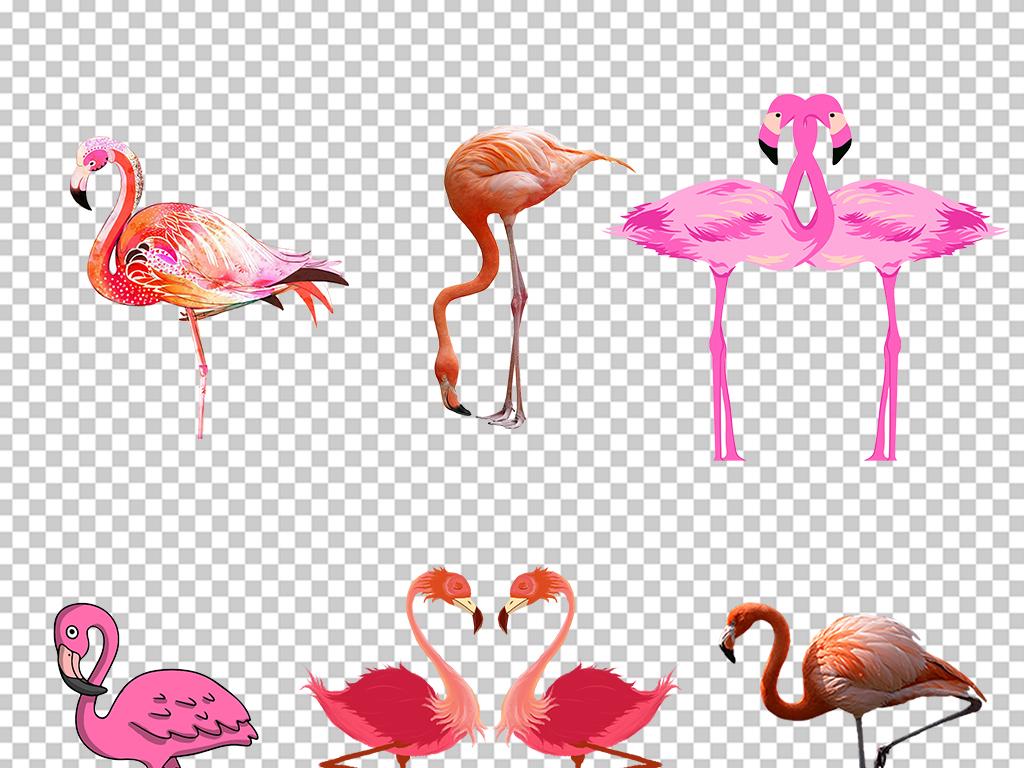 卡通手绘火烈鸟可爱海报素材背景png素材