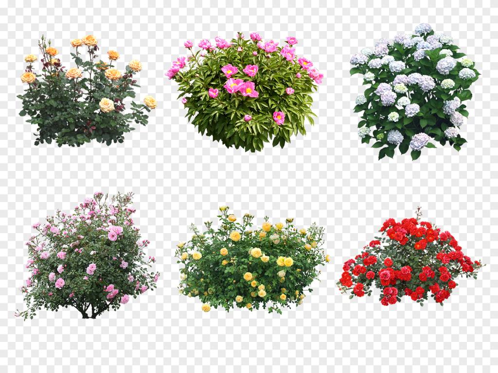 手绘花卉树林花卉植物花卉素材花卉大树树木后期绿化素材花丛植物图片