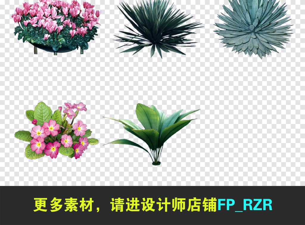 乔木植物绿色鲜花植物花草花草园林景观花草素材绿色素材绿色植物植物