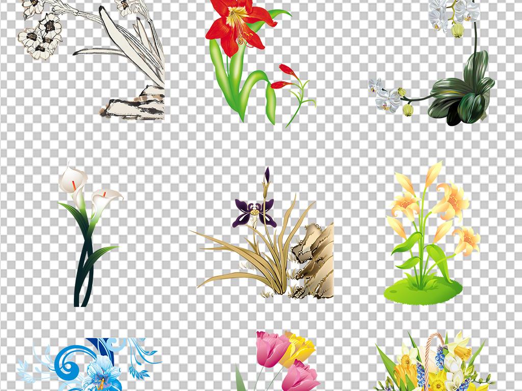 植物鲜花装饰画挂画ppt花卉花藤手绘花花卉花语春天素材小报