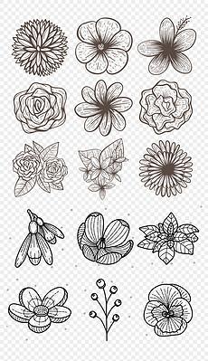 I矢量手绘线描黑白花卉线稿植物免抠素材-PNG百合花 稿 PNG格式百