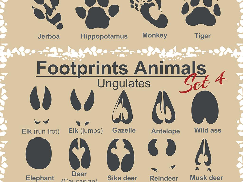 矢量通用动物陈委脚印设计素材