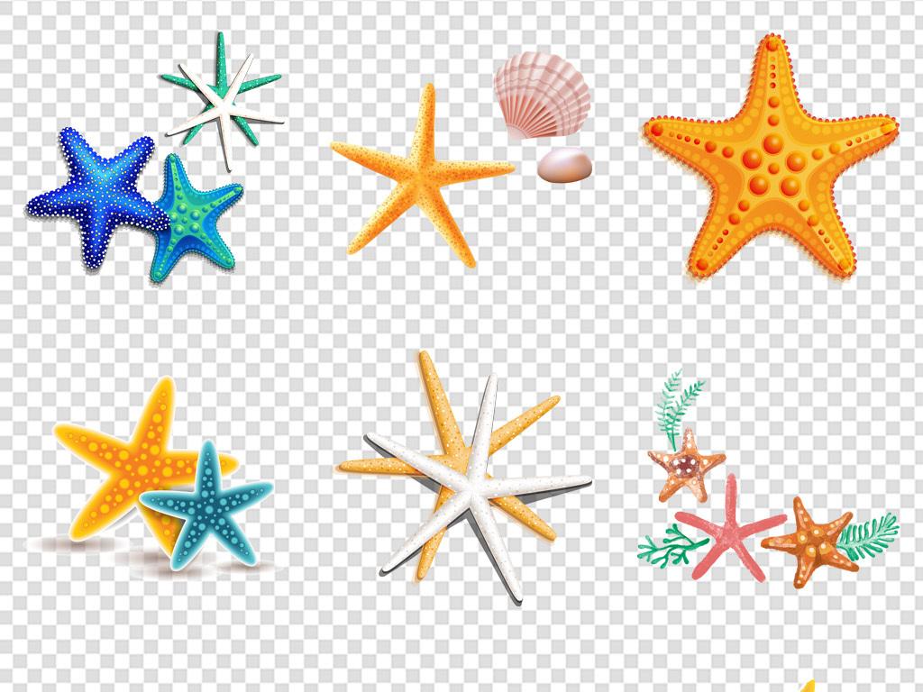 卡通手绘彩色海星贝壳海洋生物免扣素材png