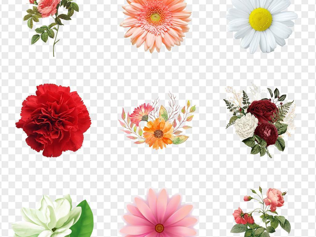 粉色手绘玫瑰花樱花桃花鲜花粉红结婚花情人节素材红色素材玫瑰花素材