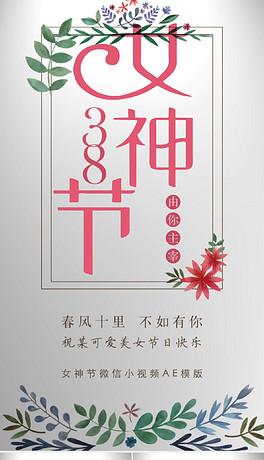 三八妇女节女神节女王祝福抖音短视频AE