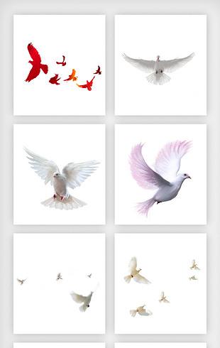展翅飞翔的和平鸽高清免扣png图片