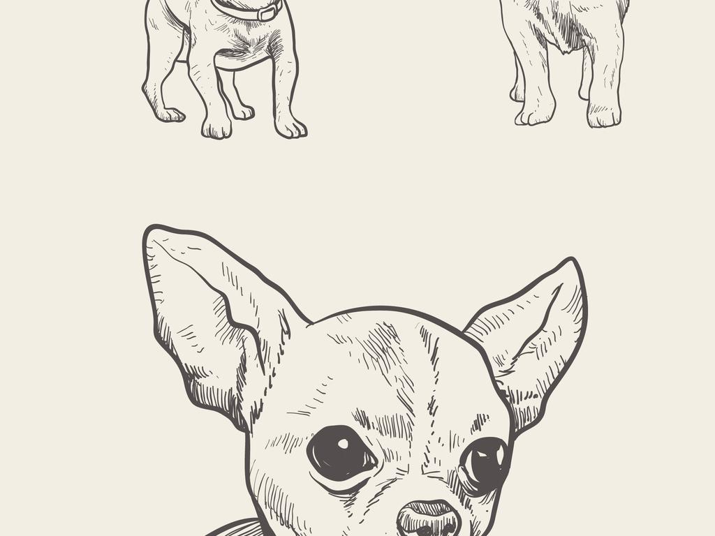 可爱动物矢量设计元素