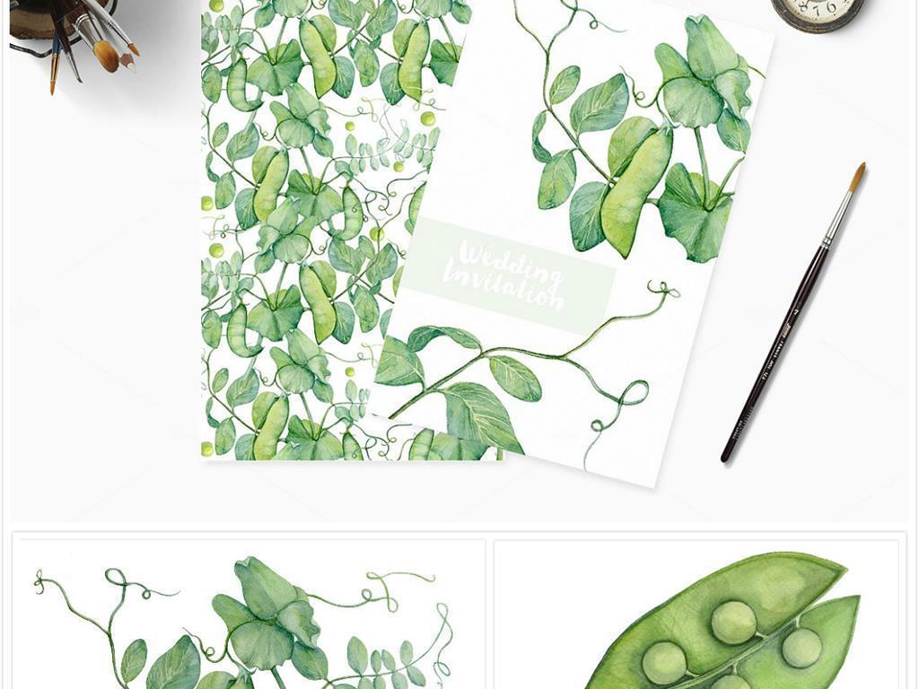 手绘豌豆水彩画