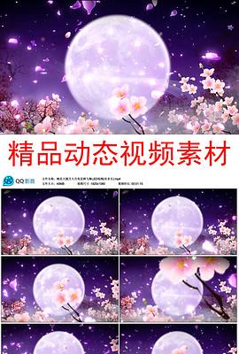梅花大圆月大月亮花辨飞舞LED视频(有音乐)
