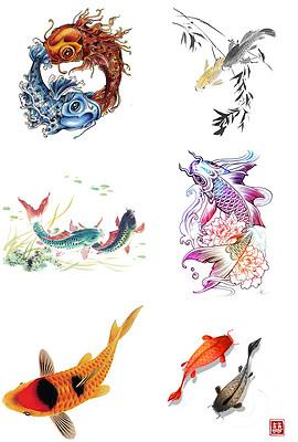 工笔画鲤鱼图片素材 工笔画鲤鱼图片素材下载 工笔画鲤鱼背景素材 工