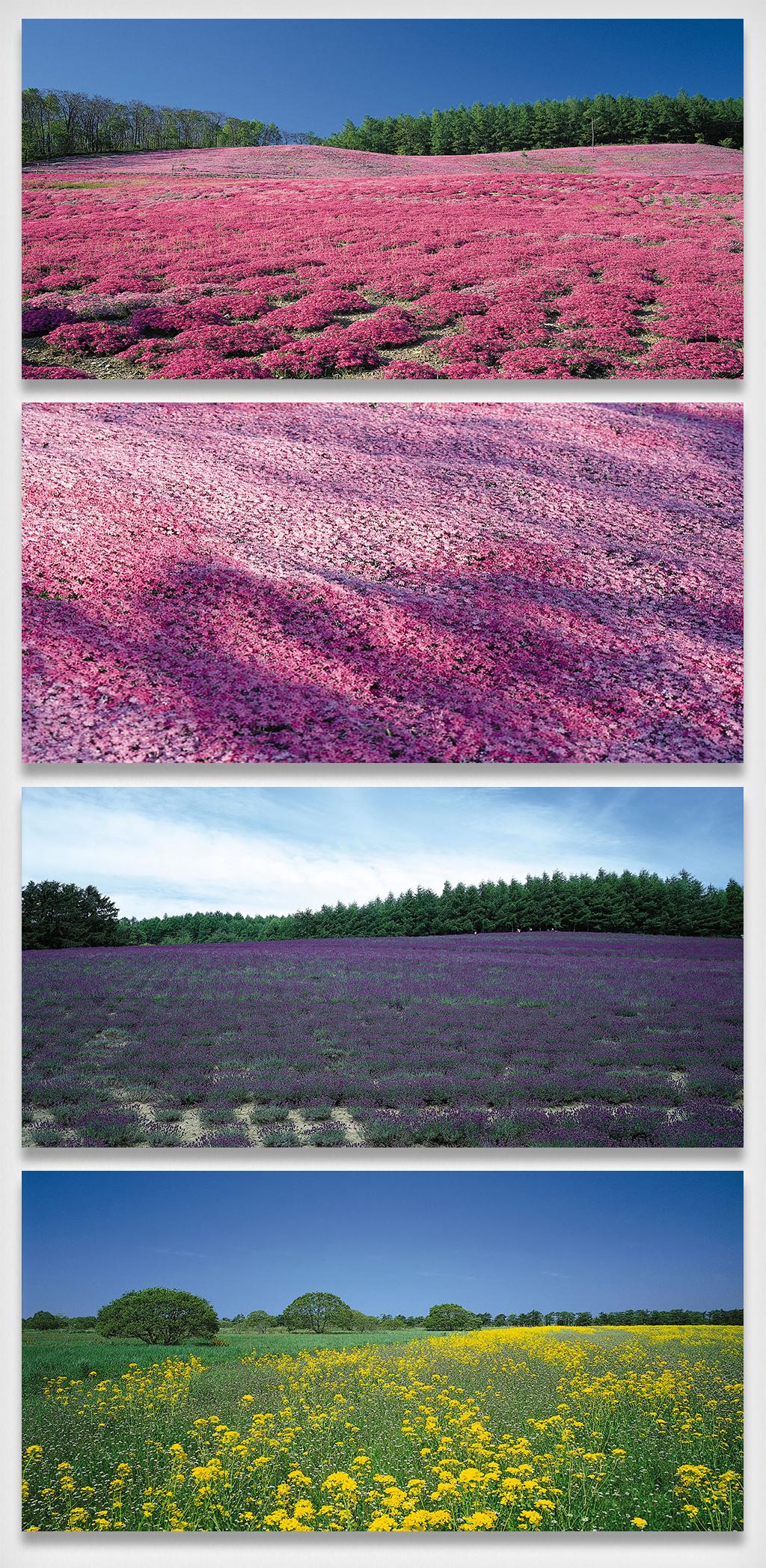 手机用图 创意配图 自然风景 > 大自然山水风景背景图   图片编号:274