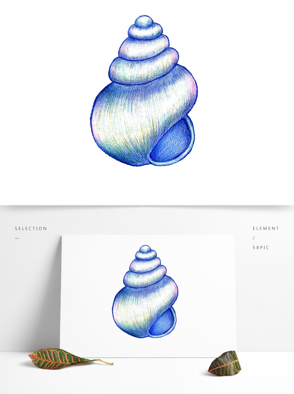 蓝色小清新贝壳治愈系手绘彩铅