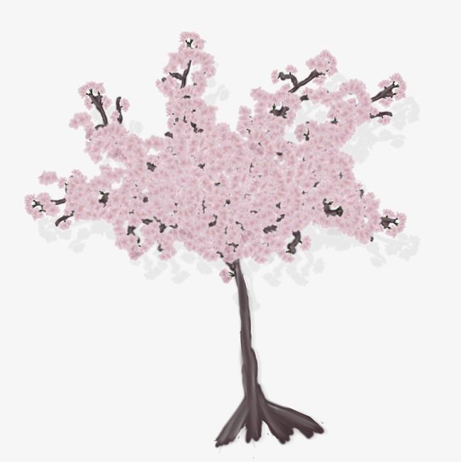 樱花树png素材