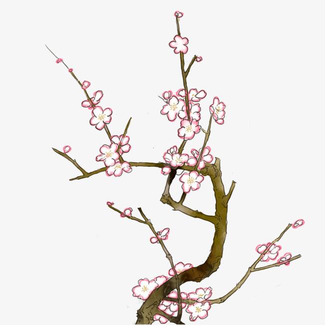 梅花枝干高清手绘免扣图