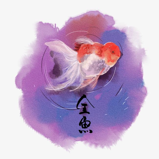 水彩风手绘插画小金鱼