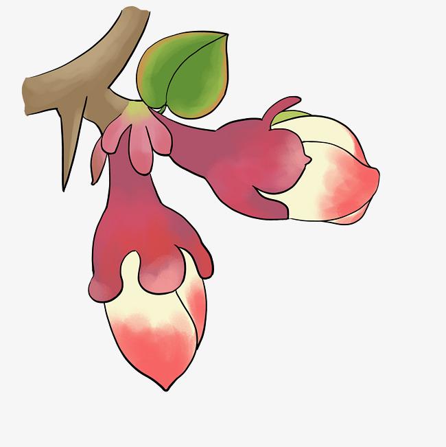 设计元素 人物形象 动漫人物 > 手绘植物花卉海棠花春天花店花艺插花