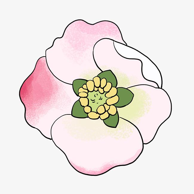 设计元素 人物形象 动漫人物 > 手绘植物花卉春天粉红色海棠花   图片