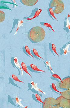 免鱼图片素材 免鱼图片素材下载 免鱼背景素材 免鱼模板下载 我图网