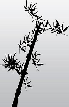 ps手绘竹子装饰水墨植物装饰图片