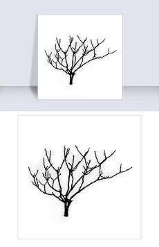干枯的树枝图片素材 干枯的树枝图片素材下载 干枯的树枝背景素材 干枯的树枝模板下载 我图网