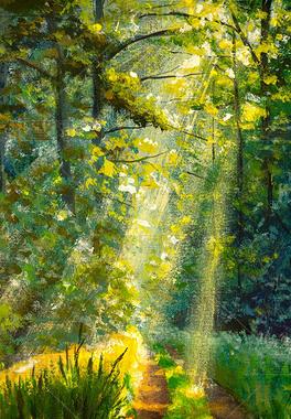 画绿色森林阳光。森林里明亮的阳光在绿树成荫的小径上闪耀.