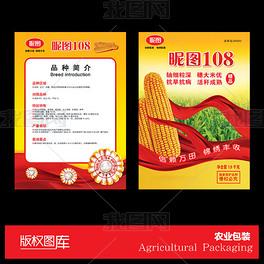 玉米种子宣传单