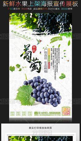 新鲜水果葡萄海报促销展板设计
