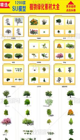 花卉植物素材花卉植物盘景绿化素材