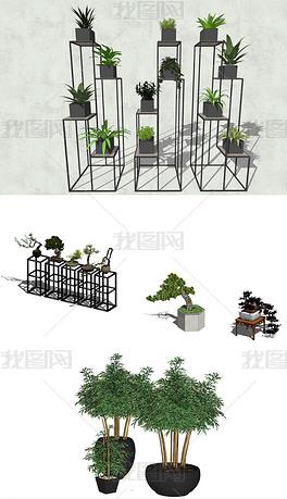 植物盆栽SU组合模型