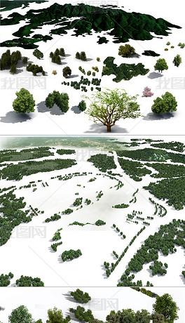 鸟瞰植物树psd分层景观园林后期效果图