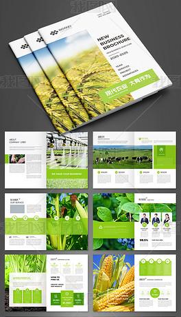 绿色简约现代农业农产品生态农业宣传册模板