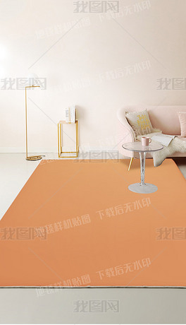 多款现代北欧轻奢客厅地毯详情页场景样机贴图