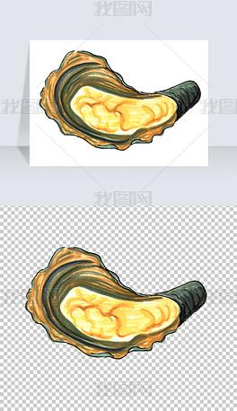 海鲜贝类海蛎贝壳手绘免抠PNG