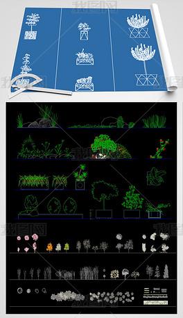 2021植物景观CAD图纸