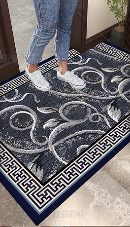 耐脏入门地毯